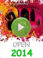 2014 India Open - Badminton Videos